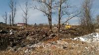 В Туле на берегу Тулицы обнаружен незаконный мусорный полигон, Фото: 15