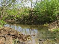 В Туле ведется расчистка Щегловского ручья от мусора, Фото: 9