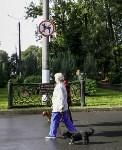Рейд по выгулу собак в Центральном парке, Фото: 10