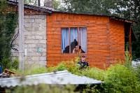 В Плеханово убирают незаконные строения, Фото: 13