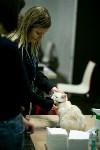 Пряничные кошки, Фото: 11