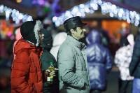 Главную ёлку Тулы открыли грандиозным фейерверком, Фото: 60