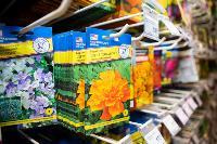 Какие семена выбрать и как правильно ухаживать за рассадой, Фото: 30