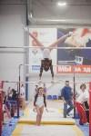 Первенство ЦФО по спортивной гимнастике, Фото: 122