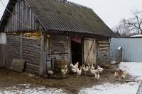 Фермерское хозяйство Людмилы Коробовой, Фото: 1