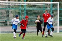 Кубок губернатора Тульской области по футболу , Фото: 42