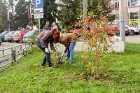 Экологический субботник в Туле, Фото: 5