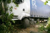 В Барсуках фура влетела в огород и сломала дерево, Фото: 12