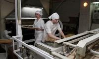 В Плавском районе Алексей Дюмин осмотрел хлебозавод «Авангард», Фото: 4