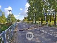 «Вам в кювет, или в деревья?» - загадочный пешеходный переход, Фото: 9