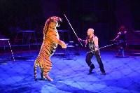 Цирковое шоу, Фото: 145