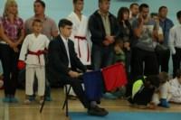 Открытое первенство и чемпионат Тульской области по каратэ (WKF)., Фото: 1