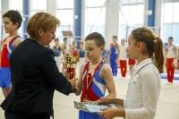 Спортивная гимнастика в Туле 3.12, Фото: 47
