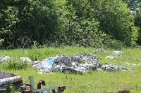 В Тульской области незаконно сжигали московский мусор, Фото: 18