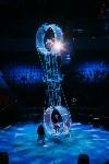 Шоу Lovero в тульском цирке, Фото: 14