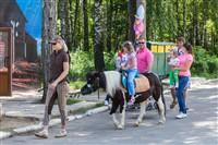 Центральный парк Тулы отметил день рождения , Фото: 17