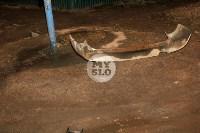 В Туле пьяный водитель устроил массовое ДТП, Фото: 3