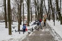 Рогожинский парк, зима 2019, Фото: 6