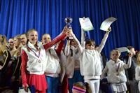 Открытый Чемпионат Тульской области по черлидингу, Фото: 67