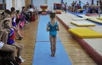 В Туле проверили ближайший резерв российской гимнастики, Фото: 10