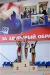Региональное первенство по спортивной гимнастике. 20 -22 марта 2014, Фото: 4