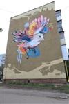 Граффити в Туле, Фото: 2