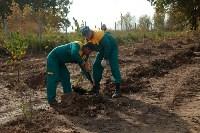 Высадка деревьев на территории бывшей судаковской свалки, Фото: 4