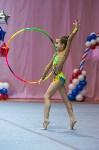 Соревнования по художественной гимнастике 31 марта-1 апреля 2016 года, Фото: 86