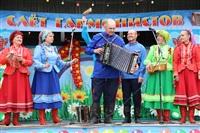 Юбилейный слёт гармонистов, Фото: 10