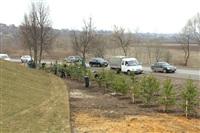 Высадка деревьев в Мясново, 4 апреля 2014 г., Фото: 4