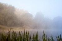Центральный парк, утро, осень, Фото: 9