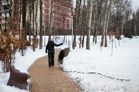 осмотр Платоновского парка, Фото: 24