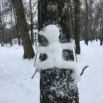 Туляки слепили креативных снеговиков: фото, Фото: 2