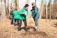 Посадка деревье в Ясной Поляне. 17.04.2015, Фото: 11