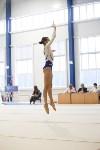 Спортивная гимнастика в Туле 3.12, Фото: 171