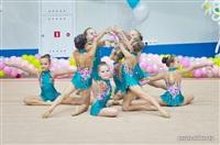 III Всебелорусский открытый турнир по эстетической гимнастике «Сильфида-2014», Фото: 4