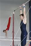Первый этап Всероссийских соревнований по спортивной гимнастике среди юношей - «Надежды России»., Фото: 28