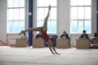 Соревнования по спортивной гимнастике на призы Заслуженных мастеров спорта , Фото: 29