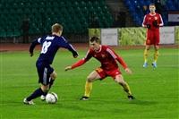 Матч «Арсенал» (Тула) – «Мордовия» (Саранск), Фото: 8