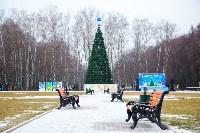 Открытие елки на площади искусств. 19.12.2014, Фото: 2