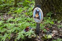 Кладбище домашних животных в Туле, Фото: 42
