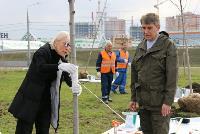 Надежда Школкина и Дмитрий Миляев высадили клены возле Ледового дворца, Фото: 10