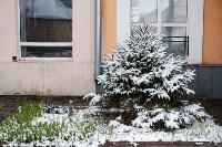 Мартовский снег в Туле, Фото: 123