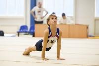 Спортивная гимнастика в Туле 3.12, Фото: 26