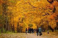 Золотая осень в Туле-2019, Фото: 93