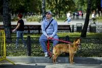 В Центральном парке Тулы проходит фестиваль помощи животным, Фото: 6