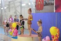 IX Всероссийский турнир по художественной гимнастике «Старая Тула», Фото: 11