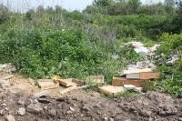 В тульском Заречье жители год добиваются ликвидации ядовитой свалки, Фото: 31