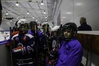 Легенды хоккея провели мастер-класс в Туле, Фото: 52
