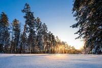Снежное Поленово, Фото: 52